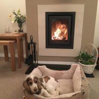 Barbas-Unilux-640-wood-burner-with-limestone-frame